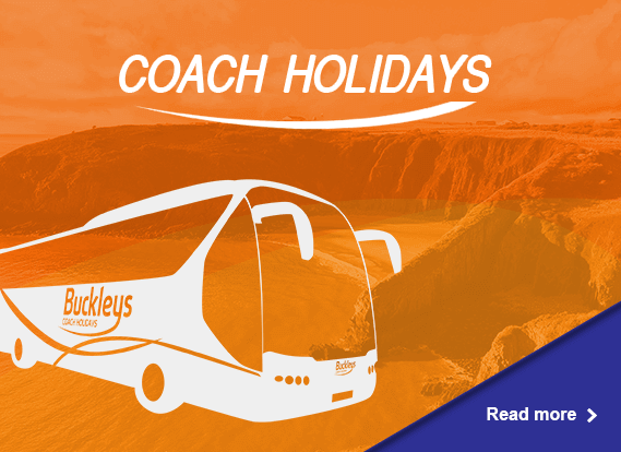 buckleys coach holiday read more ad spot